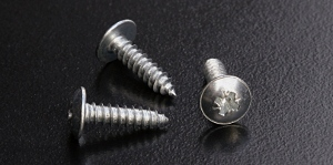 BZP No.10 Self Tapping Screws Pozidriv Pan Head with Flange Type AB