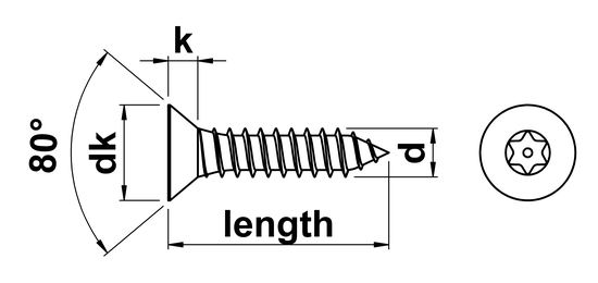 technical drawing of Pin Torx Security Countersunk Tapping Screws (AB)