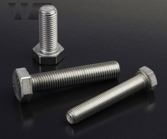 Hex Head Setscrews with fine pitch DIN 961 in A2 image