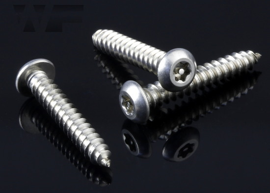 Pin Torx Security Button Head Tapping Screw (AB) in A2 image