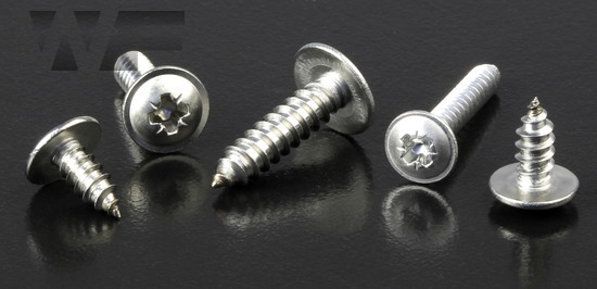 Pozi Pan Head Self Tapping Screws with Flange Type C in A2 image