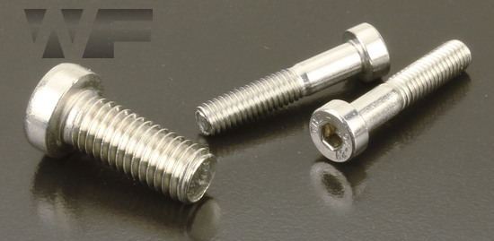 Socket Low Head Cap Screws DIN 7984 in A2 image