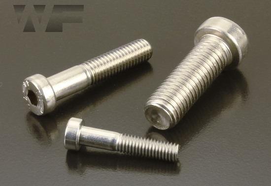 Socket Low Head Cap Screws DIN 7984 in A4 image