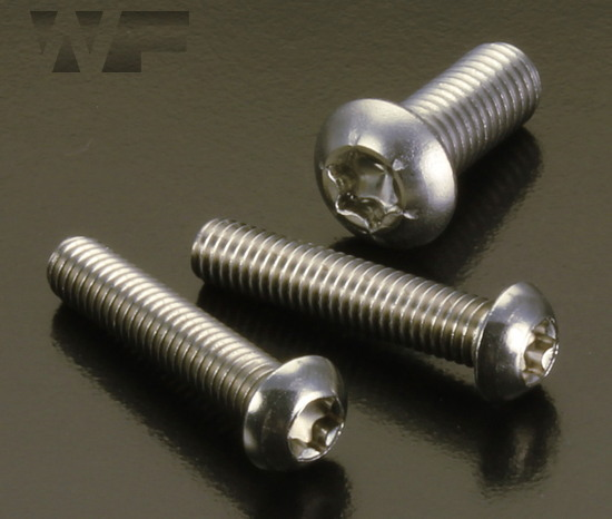 Lot of 200 Torx Screws Machine Stainless Steel M6-1.0 x 30mm