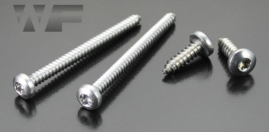 Torx Pan Head Tapping Screws Type C (AB) in A2 image